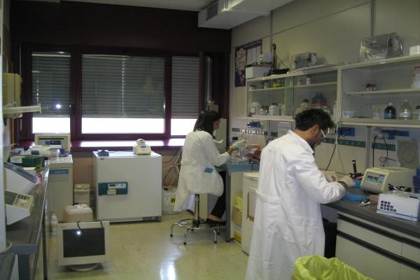 Donazione per laboratorio (6)