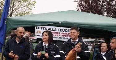 Guidonia (31)